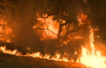Wildfires force evacuations in California