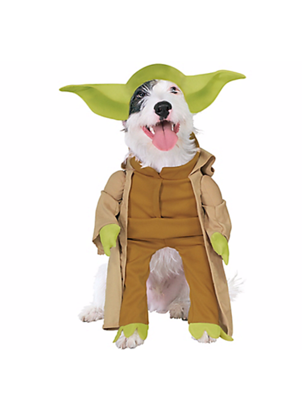 dog-yoda.png