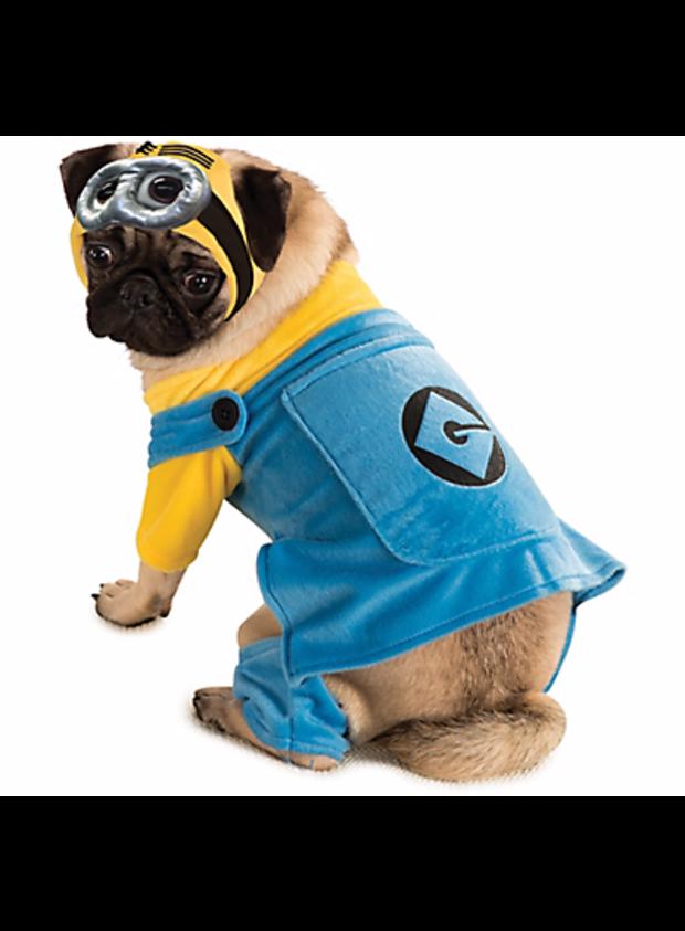 minion-dog.png