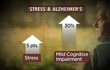 Stress linked to mental decline, possible Alzheimer's risk