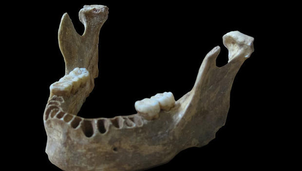ancient-jawbone-human-neanderthal.jpg