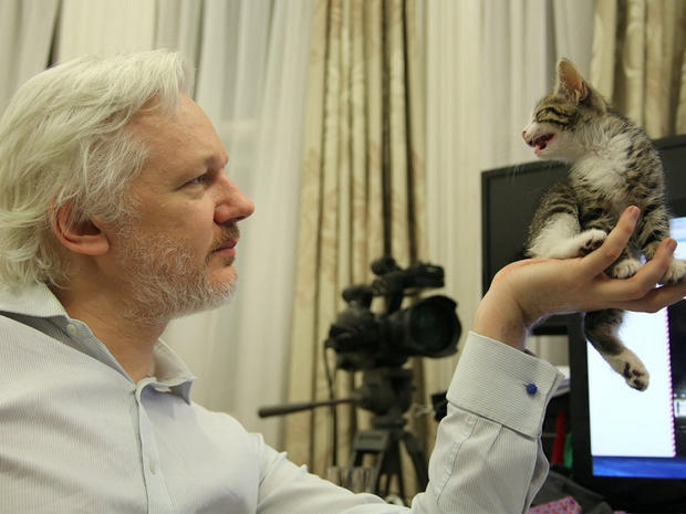 Julian Assange and his kitten