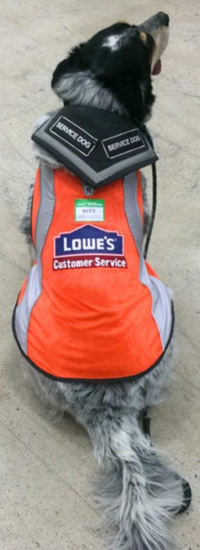 Man with brain injury cries tears of joy after Lowe's store gives
