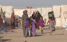 Refugees desperate for food and water outside Fallujah