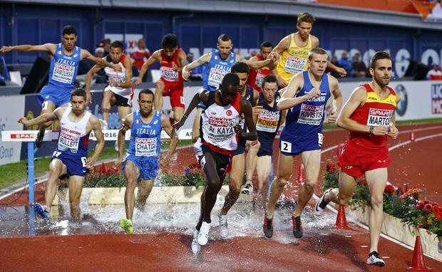 Athletes compete in the men's 3000m steeplechase final for the European championships in Amsterdam July 8, 2016.