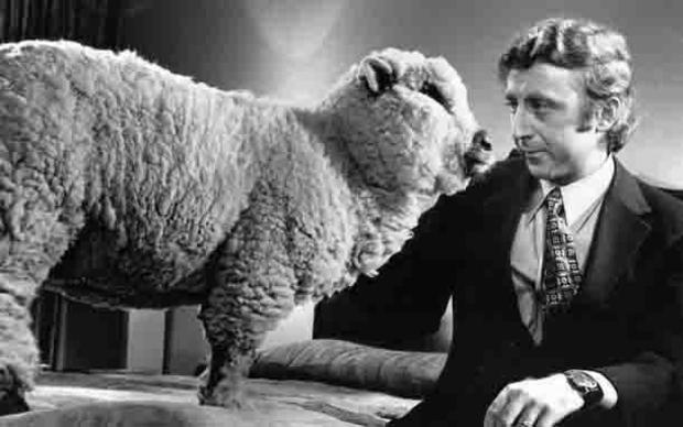 gene-wilder-everything-you-always-wanted-to-know-about-sex.jpg