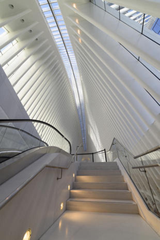 daniel-jones-stairway-and-skylight.jpg