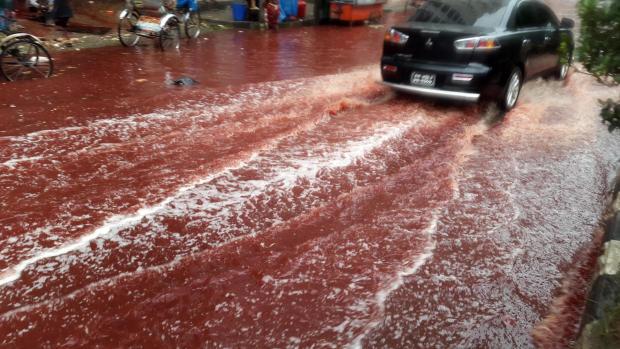 bangladesh-rivers-of-blood-ap-16258455779010.jpg