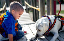 An autistic boy and his service dog
