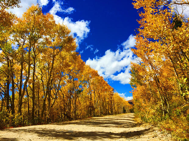 Colorado fall foliage 2016 pictures cbs news sciox Choice Image