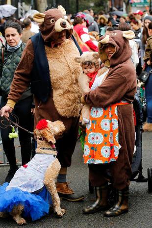 Halloween Dog Parade 2016