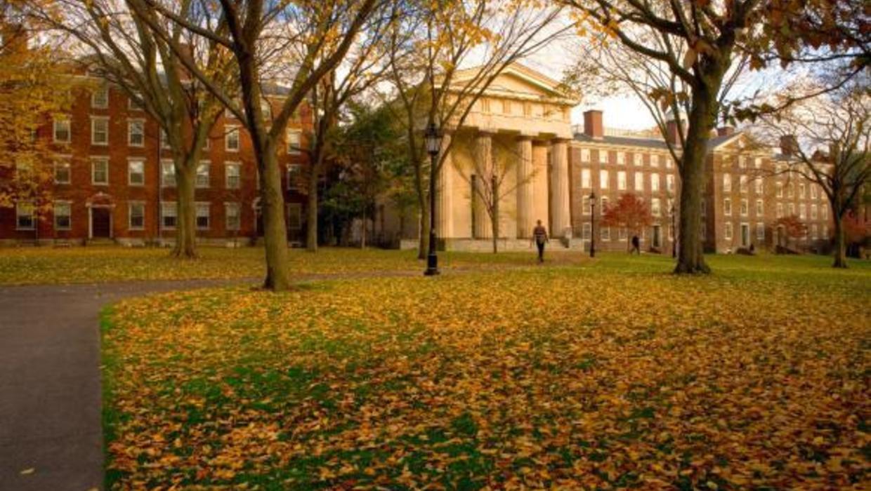 brown university common app essay