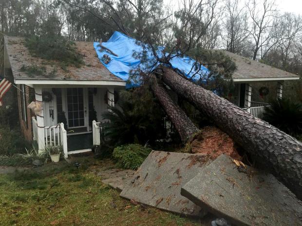 tree-hits-belview-alabama.jpg