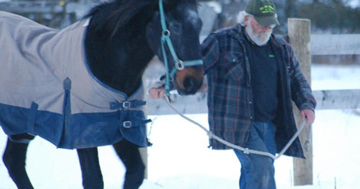 An old horse and his friend - CBS News