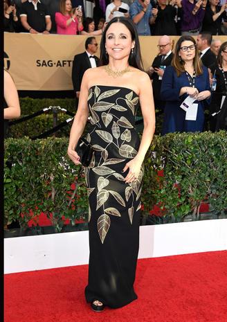 SAG Awards 2017 red carpet