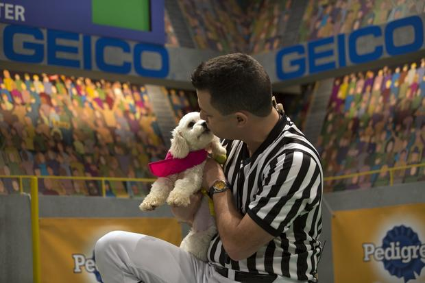 Meet the pooches of Puppy Bowl 2017