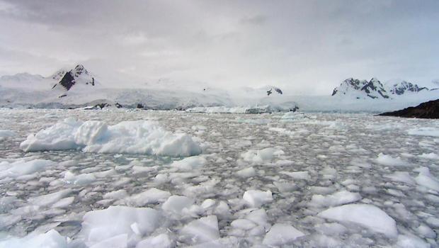 antarctica-620.jpg