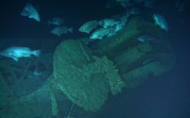 wwii-shipwreck-habitat.jpg