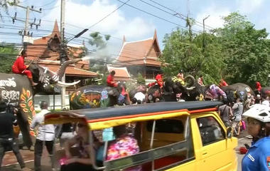 Watch elephants spray tourists during the Thai New Year festival