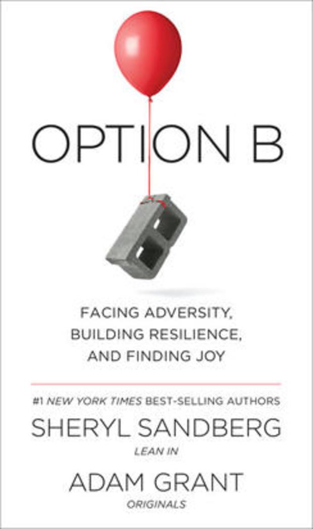 option-b-cover-knopf-244.jpg