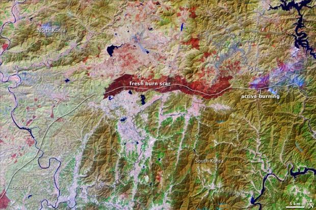 north-korea-dmz.jpg