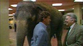 From the archives: When Andy Rooney went to the circus