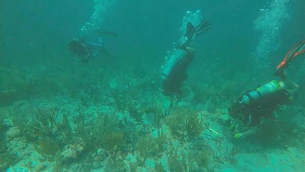 0630-ctm-bojorquez-coralreefgardners-1347076-640x360.jpg