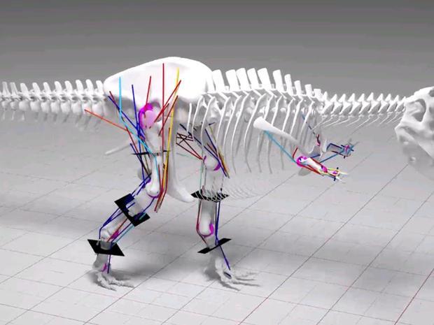 t-rex-couldnt-run.jpg
