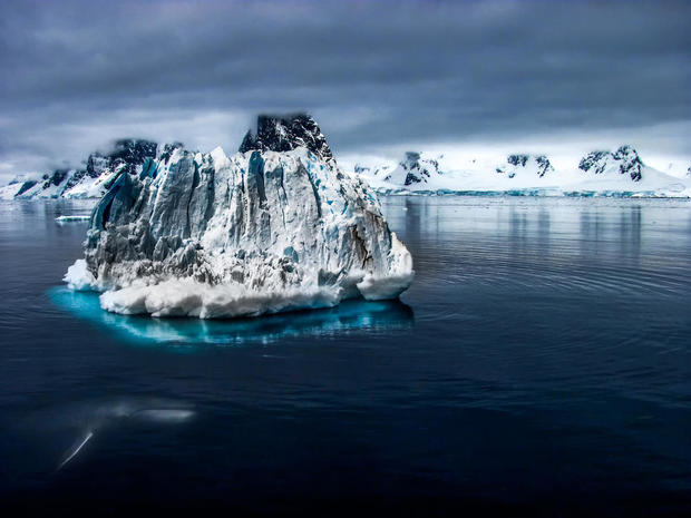 climate change iceberg migration