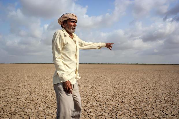 climate change crop death