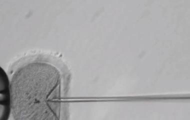 Breakthrough gene repair technique could fix disease-causing mutation
