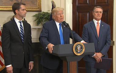 Trump backs GOP bill calling for cuts in legal immigration