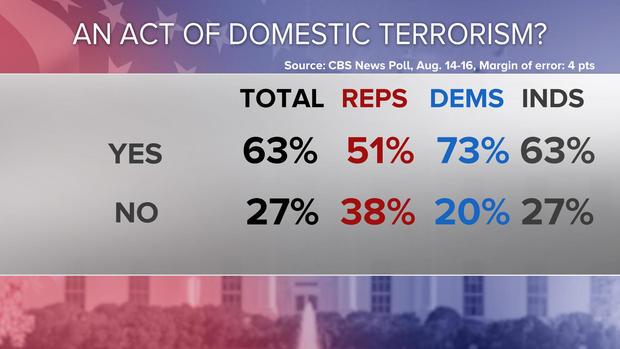 upd-domestic-terrorism.jpg