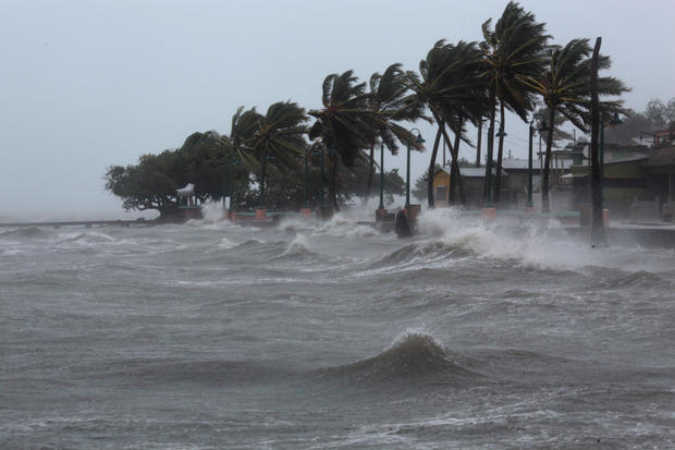 Palm tress buckle under winds and rain in Fajardo as Hurricane Irma slammed across islands in the northern Caribbean