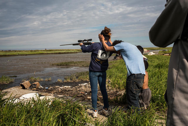Alaska gun ownership