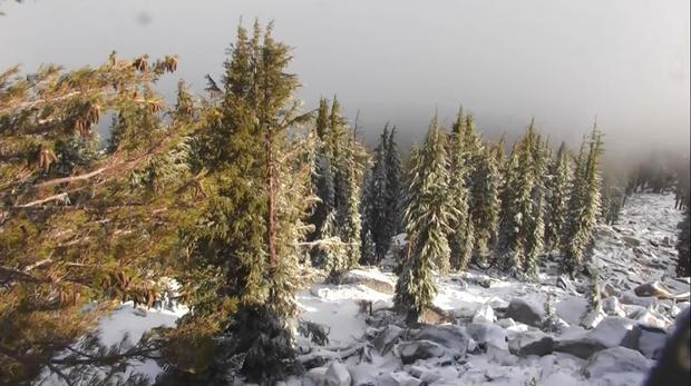 sierra-summer-snow-092117.jpg