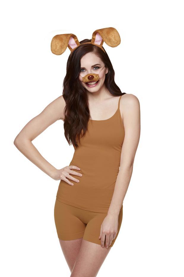 brown-dog-nose-ears.jpg