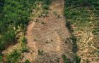 DOUNIAMAG-GUATEMALA-DROUGHT-DEFORESTATION