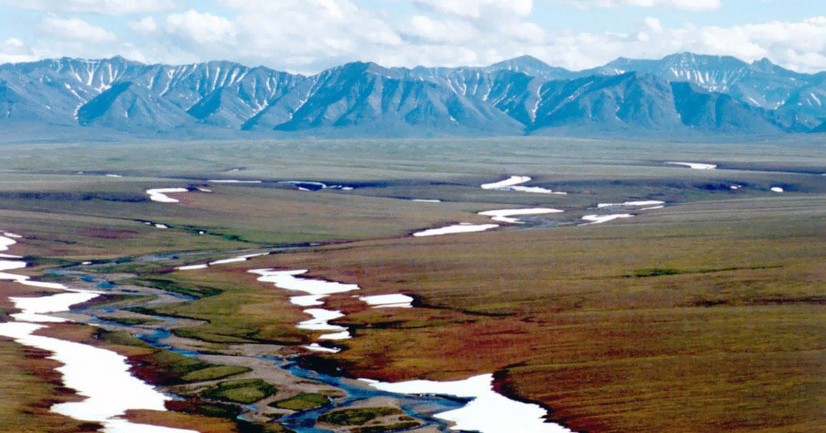 drilling in the arctic national wildlife refuge essay Offshore drilling, shale oil deposits, and untapped anwr oil will help combat high gas prices and make the us oil anwr (arctic national wildlife refuge) according to the us minerals survey drilling in anwr could produce up to 800 billion barrels of oil, enough oil.