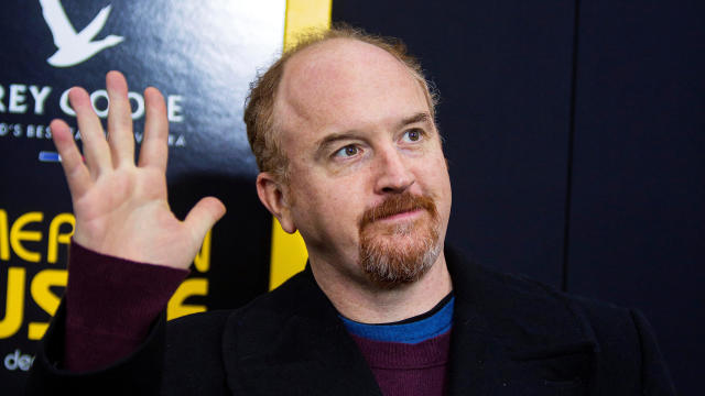 "Cast member Louis C.K. attends the ""American Hustle"" movie premiere in New York Dec. 8, 2013."