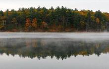 Nature: Walden Pond