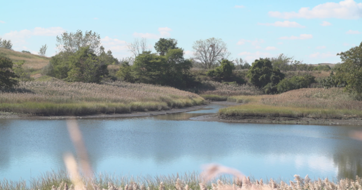Freshkills landfill, once the world's largest dump, being transformed into park