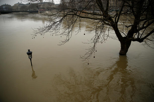 A street lamp and a tree are seen on the flooded banks of the River Seine in Paris