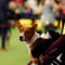 Tuco, a Basenji breed, is held by its handler during Day One of competition at the Westminster Kennel Club 142nd Annual Dog Show in New York