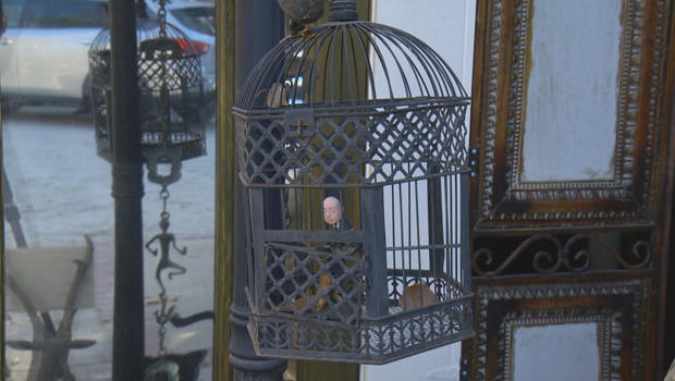 legacy-alfred-hitchock-in-a-cage-at-tippi-hedren-home-620.jpg