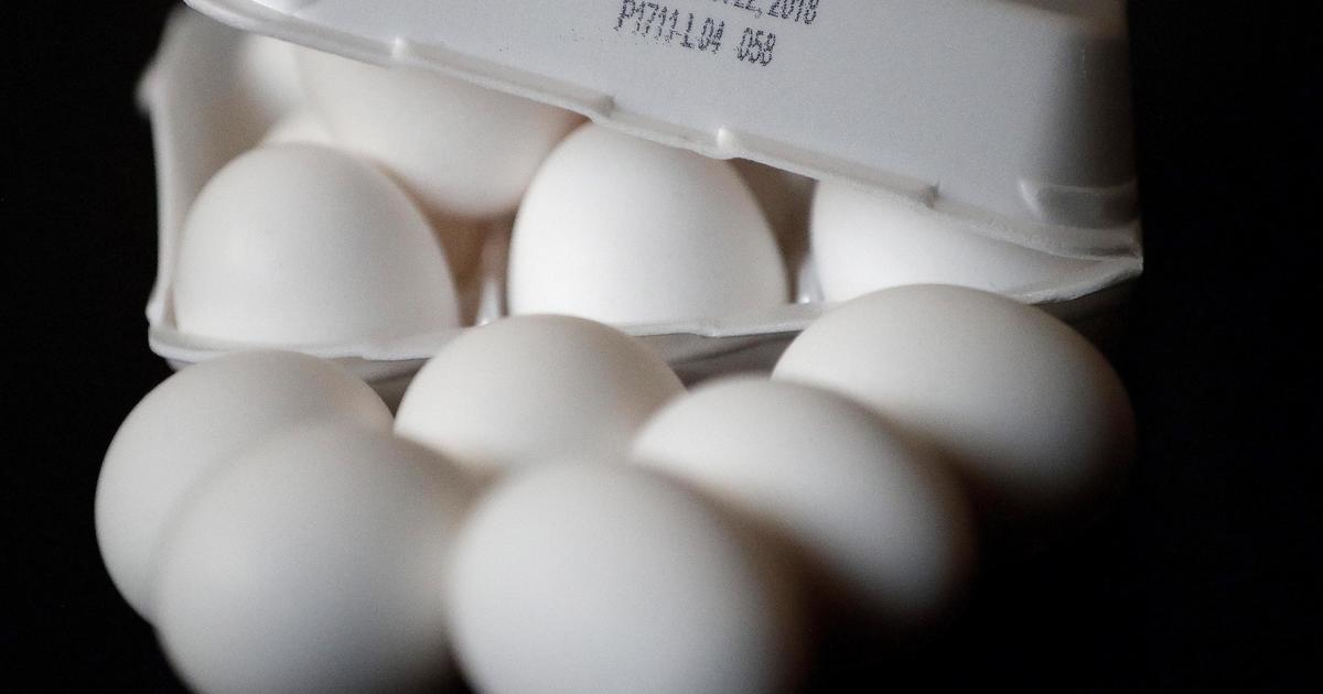 206 million eggs recalled over salmonella concerns