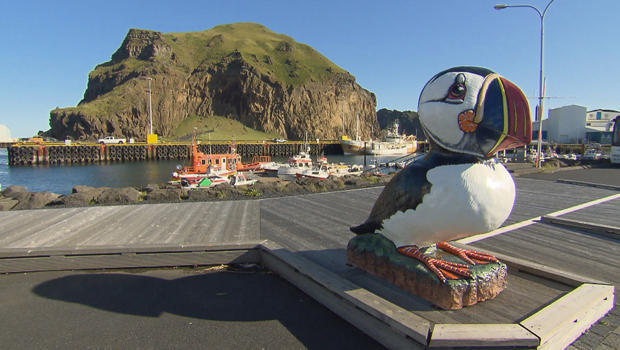 puffins-statue-on-the-island-of-heimaey-620.jpg