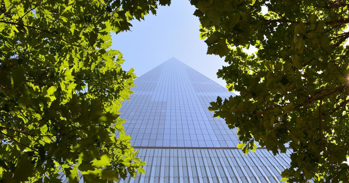 How megacities can save megabucks: Plant trees