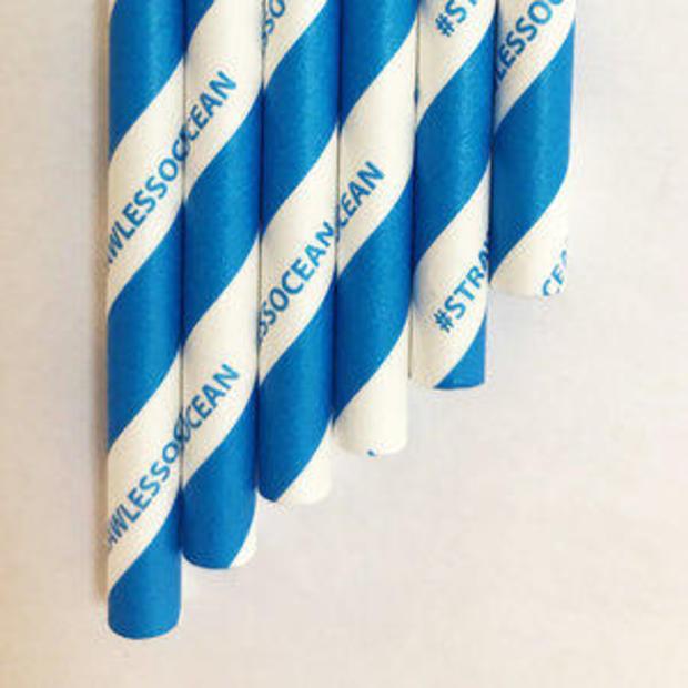 strawless-ocean-aardvark-paper-straw.jpg