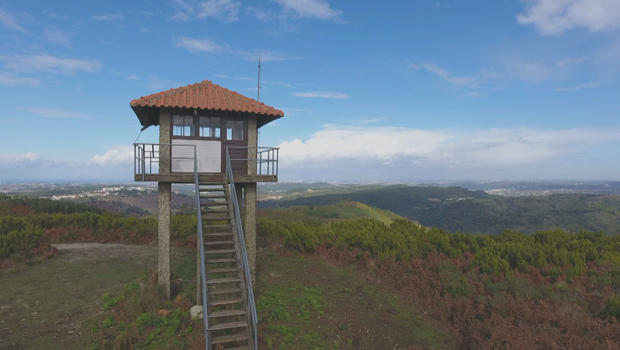 forest-fire-watch-tower-620.jpg